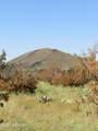 000 Alpine Ranchos # 30317010H - Photo 37