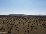 000 Alpine Ranchos # 30317010H - Photo 6