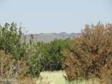 000 Alpine Ranchos # 30317010H - Photo 7