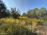 1542 Coyote Lane - Photo 16