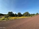 1542 Coyote Lane - Photo 6
