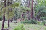 1729 Pine Ridge Dr Drive - Photo 6