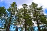 1729 Pine Ridge Dr Drive - Photo 7
