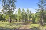 4551 Green Mountain Drive - Photo 11