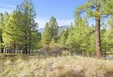 4551 Green Mountain Drive - Photo 7