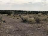 5349c Mile High Dr - Photo 14