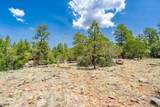 1140 Cactus Wren Circle - Photo 9