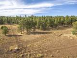 623 Double A Ranch Road - Photo 11
