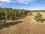 623 Double A Ranch Road - Photo 12