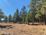 623 Double A Ranch Road - Photo 14