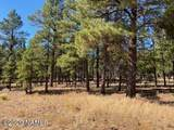 623 Double A Ranch Road - Photo 15