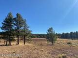 623 Double A Ranch Road - Photo 17