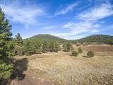 623 Double A Ranch Road - Photo 2