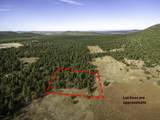 623 Double A Ranch Road - Photo 4