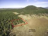623 Double A Ranch Road - Photo 8