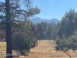 623 Double A Ranch Road - Photo 9