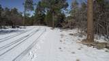 1670 Canyon View Loop - Photo 13