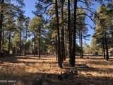 2869 Castle Pines Drive - Photo 14