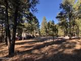 2869 Castle Pines Drive - Photo 15