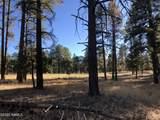 2869 Castle Pines Drive - Photo 16