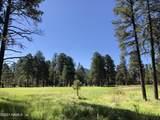 2869 Castle Pines Drive - Photo 17