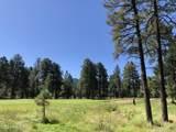 2869 Castle Pines Drive - Photo 18