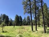2869 Castle Pines Drive - Photo 2