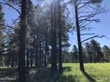 2869 Castle Pines Drive - Photo 4