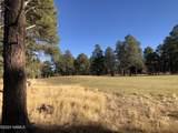 2869 Castle Pines Drive - Photo 6