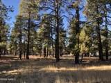 2869 Castle Pines Drive - Photo 8