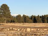 93 Highland Meadows Drive - Photo 10