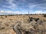 10496 Line Cook Trail - Photo 10