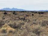 10496 Line Cook Trail - Photo 13