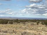 10496 Line Cook Trail - Photo 9