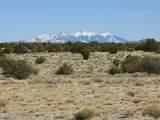 8151 Mineral Wells Road - Photo 1