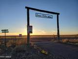 5102 Sun Dog Trail - Photo 41