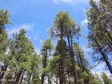 2222 Eagle Creek Lane - Photo 10