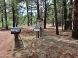2222 Eagle Creek Lane - Photo 2
