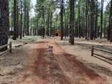 2222 Eagle Creek Lane - Photo 4
