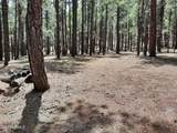 2222 Eagle Creek Lane - Photo 6