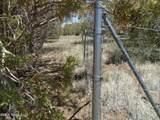 3265 Boone Trail - Photo 39