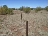 3265 Boone Trail - Photo 40