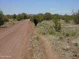 3265 Boone Trail - Photo 47