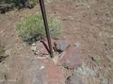3265 Boone Trail - Photo 48