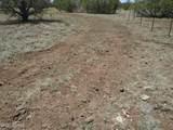 3265 Boone Trail - Photo 54