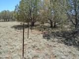 3265 Boone Trail - Photo 56