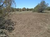 3265 Boone Trail - Photo 58