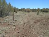 3265 Boone Trail - Photo 59