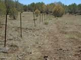 3265 Boone Trail - Photo 60