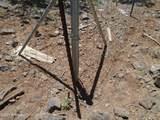 3265 Boone Trail - Photo 62